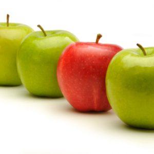 comparaison-de-pommes-20110907